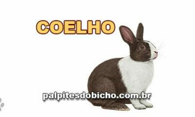 Palpites do Bicho Dia 29/04/2020 Tarde