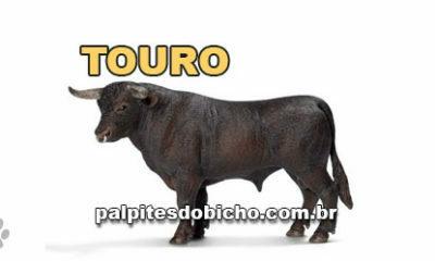 Palpites do Bicho Dia 30/04/2020 Noite