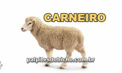 Palpites do Jogo do Bicho Dia 03/11/2020 Noite