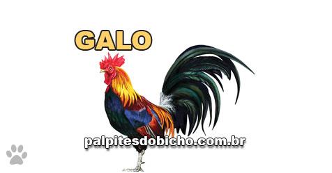 Palpites do Jogo do Bicho Dia 09/11/2020 Noite