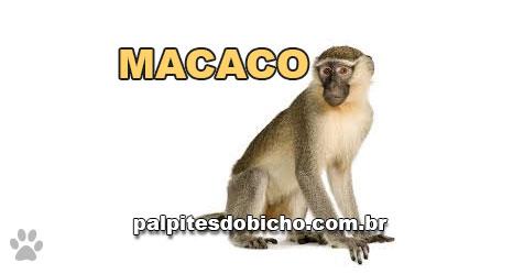 Palpites do Jogo do Bicho Dia 06/01/2021 Tarde