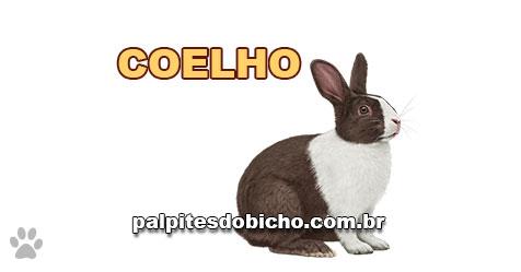 Palpites do Jogo do Bicho Dia 10-01-2021