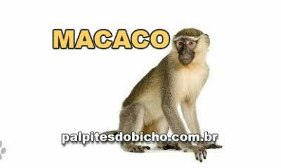 Palpites do Jogo do Bicho Dia 04/04/2021 Tarde