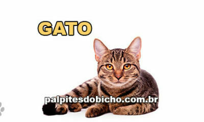 Palpites do Jogo do Bicho Dia 05/04/2021 Tarde