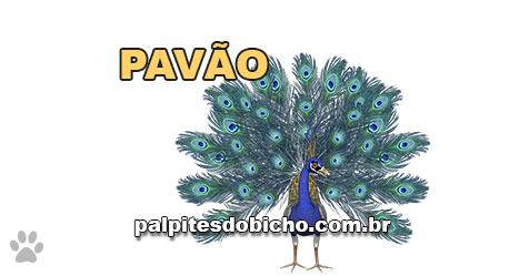 Palpites do Jogo do Bicho Dia 19-04-2021