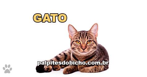 Palpites do Jogo do Bicho Dia 22/04/2021 Noite