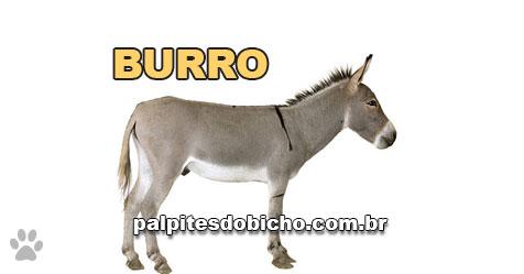 Palpites do Jogo do Bicho Dia 03-05-2021