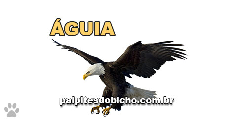 Palpites do Jogo do Bicho Dia 29-09-2021