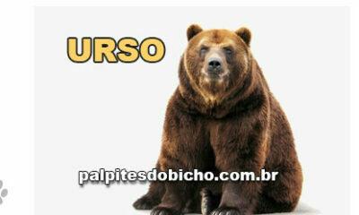 Palpites do Jogo do Bicho Dia 04/10/2021 Noite